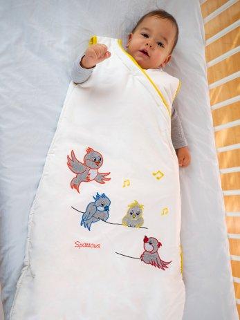 baby sparrows 0-6m
